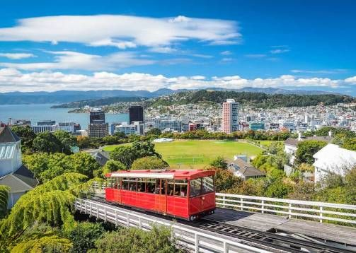 Wellington City View