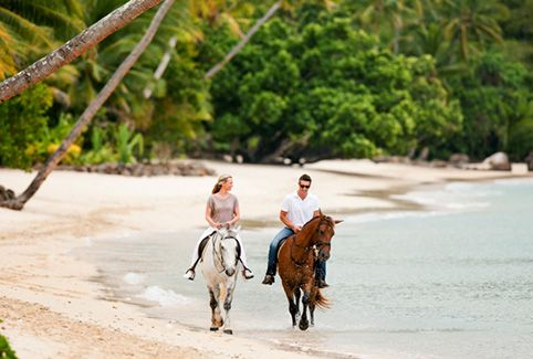 Horse riding Laucala